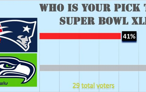 Super Bowl XLIX: Who You Got?