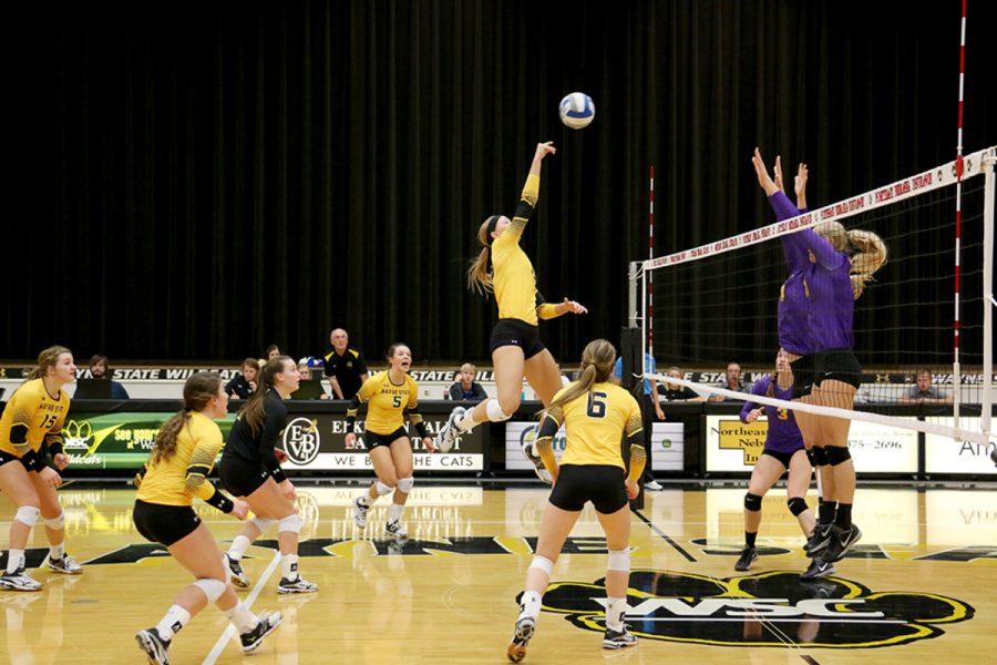 Wildcats fall in standings despite taking the split