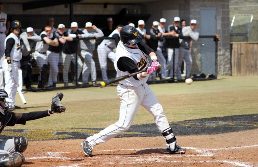 Michael Herman takes a swing on a pitch from a game last season. Herman was one of Wayne State's biggest producers over their spring break trip last week.