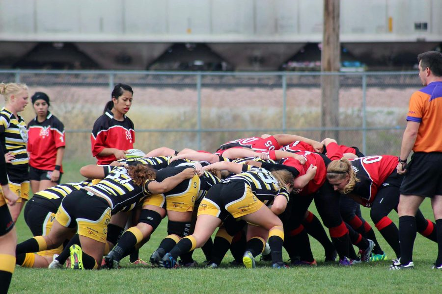 The Wildcats wait for UNL to feed the scrum on Saturday's game