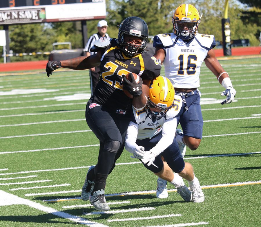 Junior running back Rashad Trimble carries the ball in Saturday's Homecoming game. Trimble ran 55 yards for the Wildcats in the game, but WSC fell short with a final score of 44-31.