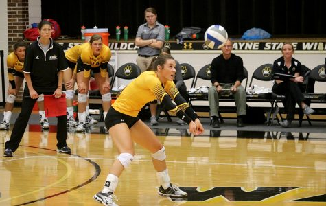 Volleyball moves up to 8th in national rankings