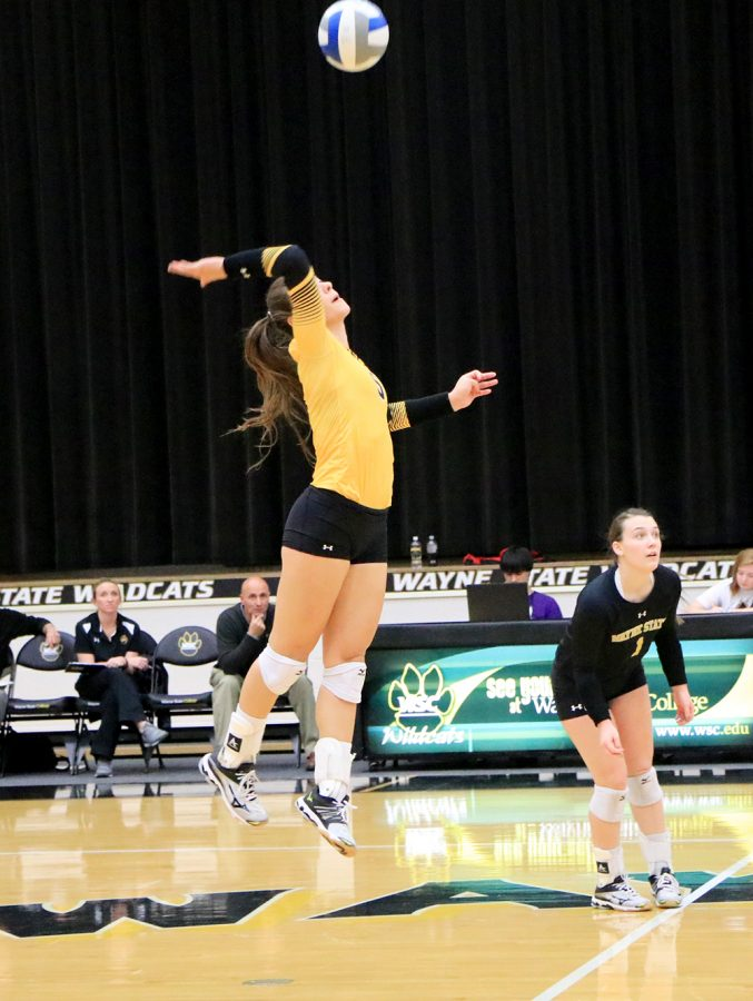 After WSC volleyball's winning weekend, the Wildcats head to the Northern Sun Conference tournament in the sixth seed. The Lady 'Cats will face off against the Minnesota Duluth Bulldogs today (Nov. 16) to move on to the semifinals, which will be held on Saturday. Duluth, the third seed in the tournament and second in the nation, previously beat the Wildcats in league play 25-21, 25-17, 17-25, 26-24.