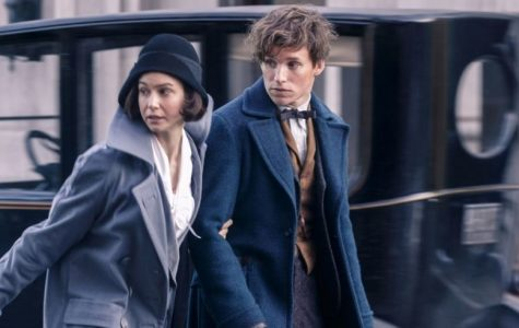 """Fantastic Beasts and Where to Find Them"" came out Nov. 18. It stars Eddie Redmayne and Katherine Waterston."