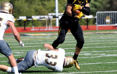 Wildcats triumphant in homecoming football game