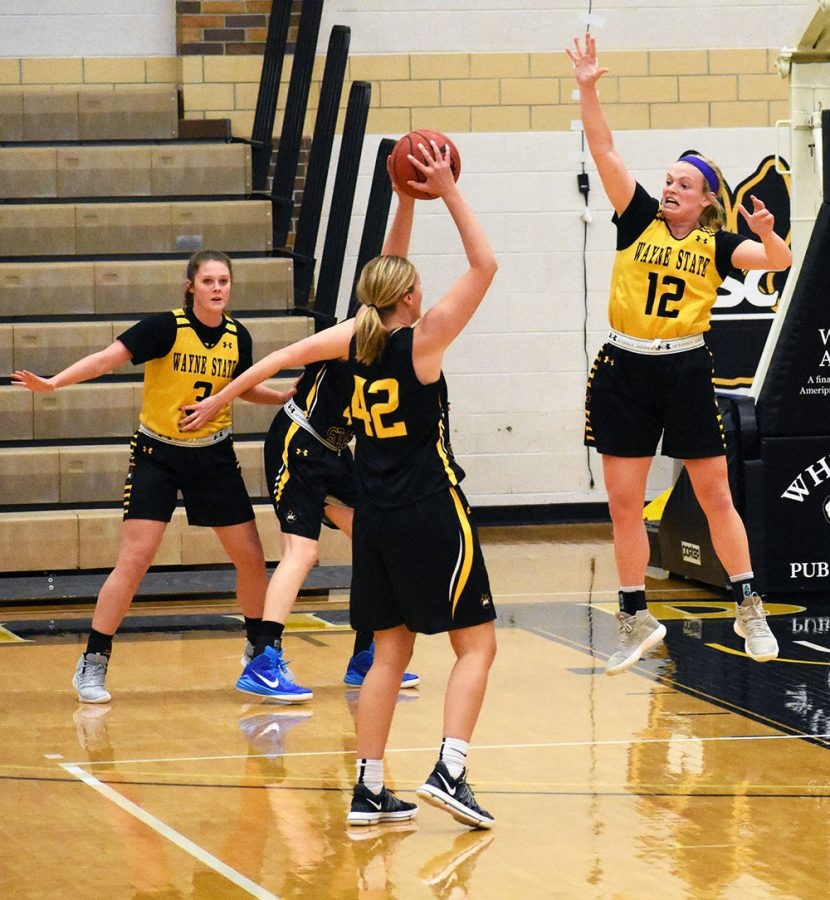 Women's basketball looks to build with new faces