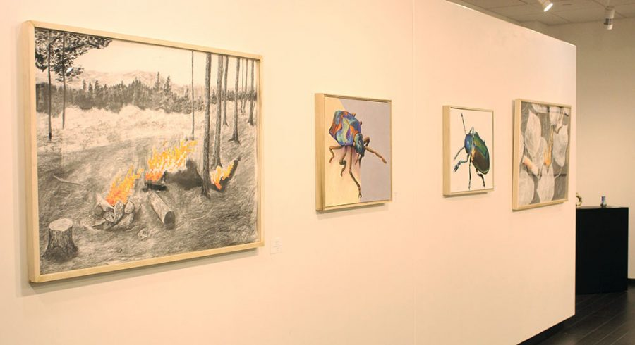 "Senior art exhibit ""Perceive and Preserve"" opens"