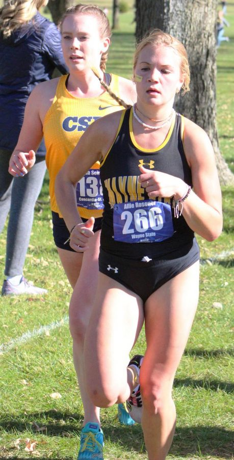 Freshman Alex Bauer competes in the NSIC Cross Country Championships.