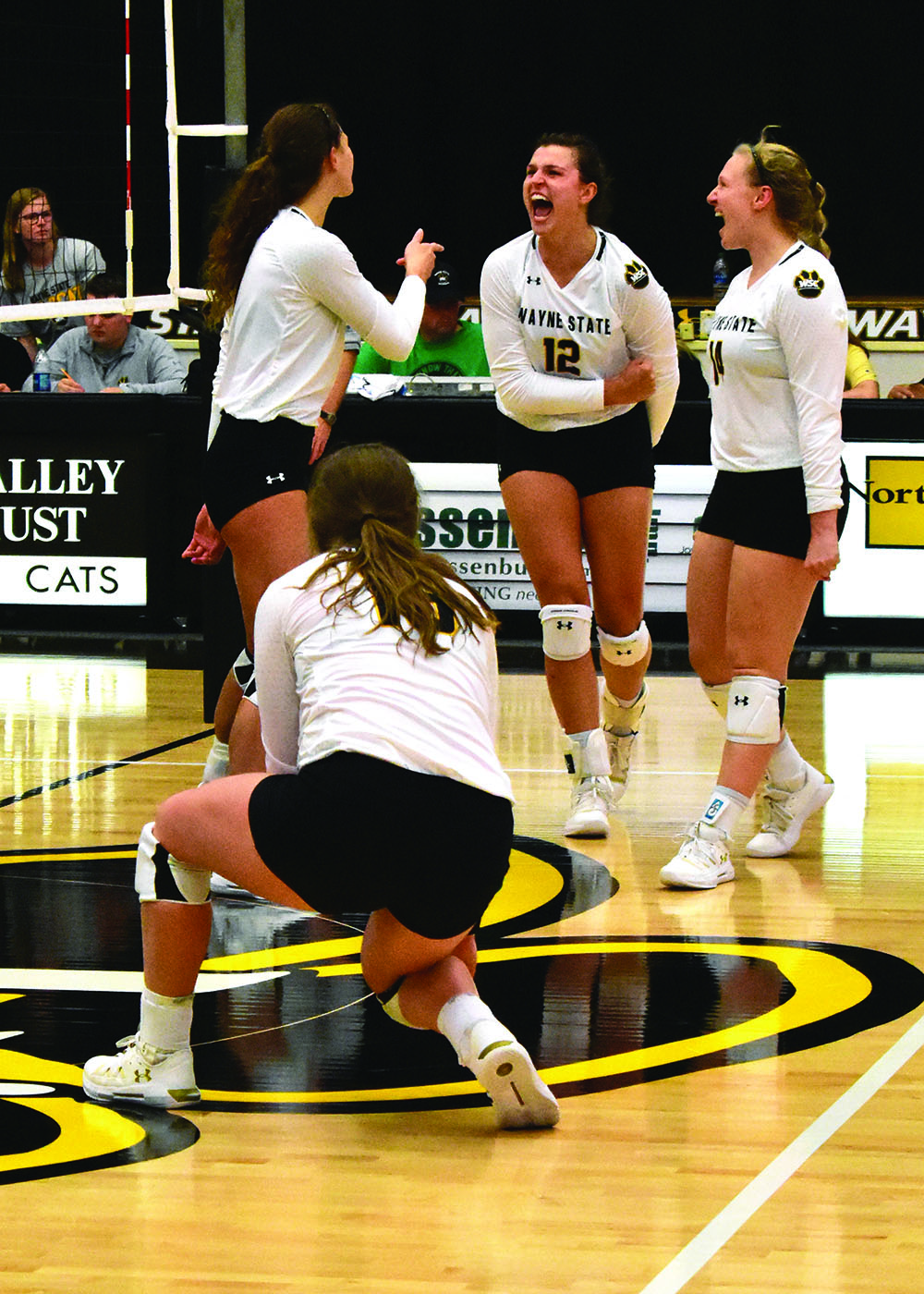 Volleyball continuing to rake up victories