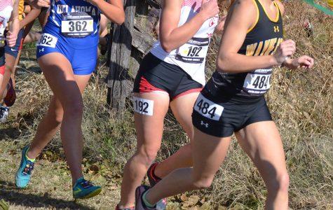 Cross Country runs at NCAA Regionals